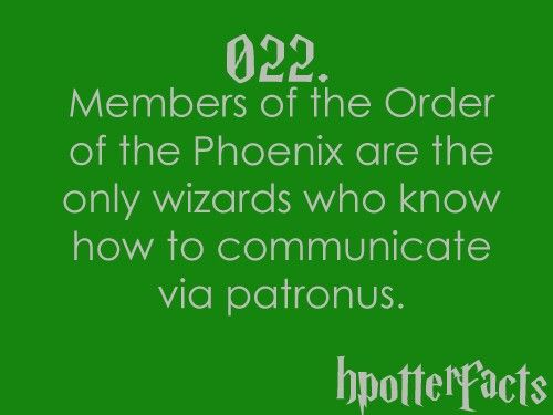 Harry Potter Facts Order of the Phoenix