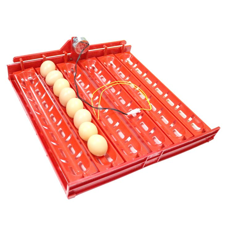 Promo 48 60 Eggs Automatic Incubator Turn The Eggs Tray