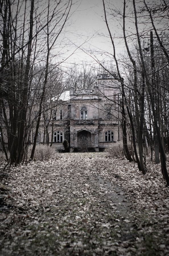 Abandoned mansion. It's really hard to see such beautiful structures abandoned.  The stories they would tell if they could