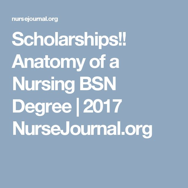 Scholarships!! Anatomy of a Nursing BSN Degree | 2017 NurseJournal.org