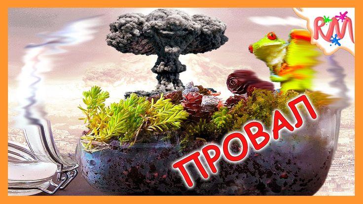 ETERNAL TERRARIUM 28 days after APOCALYPSE in closed jar @ RM Bros