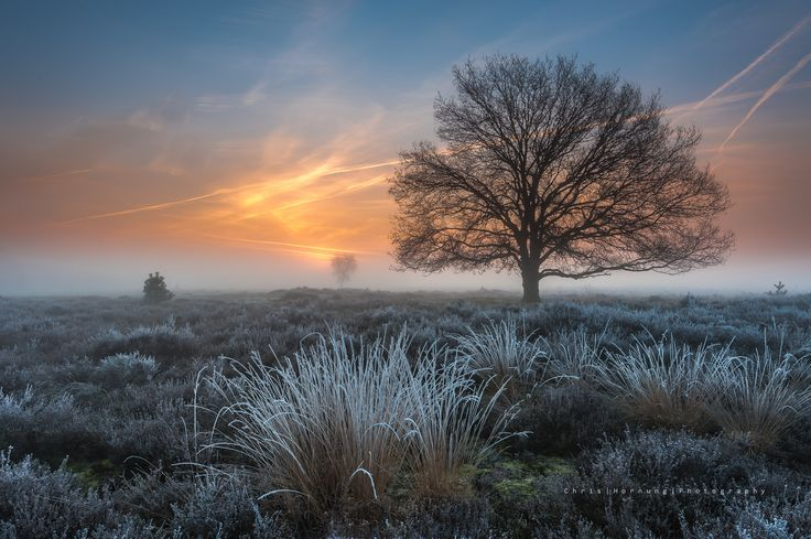 Photograph 'a magical sunrise' II by Chris Hornung on 500px