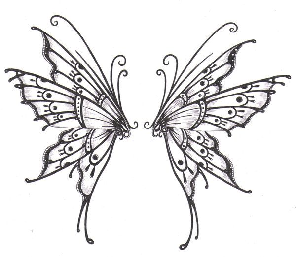 skeleton wing sketch | Butterfly wings