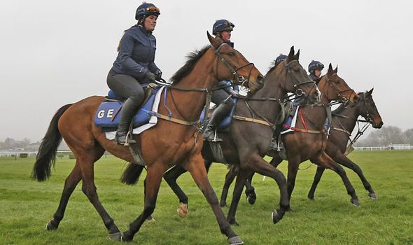 Cheltenham Festival 2017: What is a nap? Horse racing terms and betting jargon explained - https://newsexplored.co.uk/cheltenham-festival-2017-what-is-a-nap-horse-racing-terms-and-betting-jargon-explained/