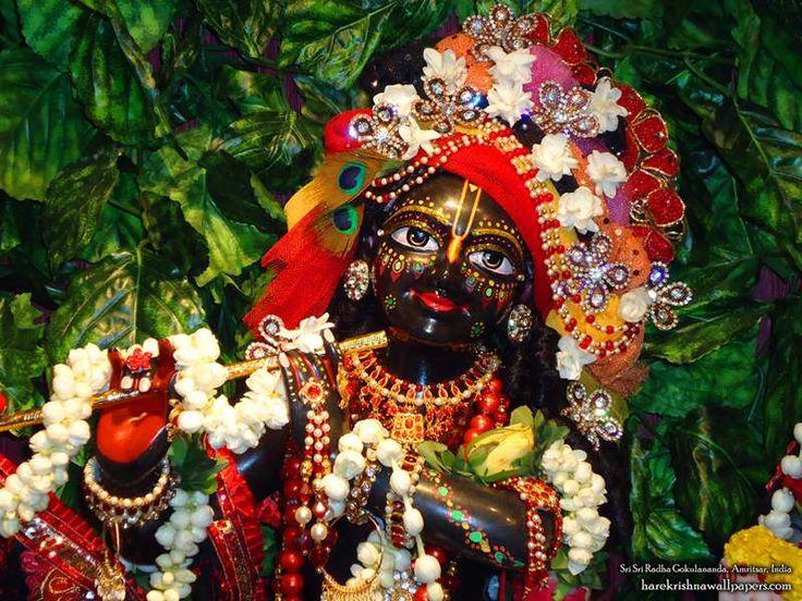 http://harekrishnawallpapers.com/sri-gokulananda-close-up-iskcon-amritsar-wallpaper-006/