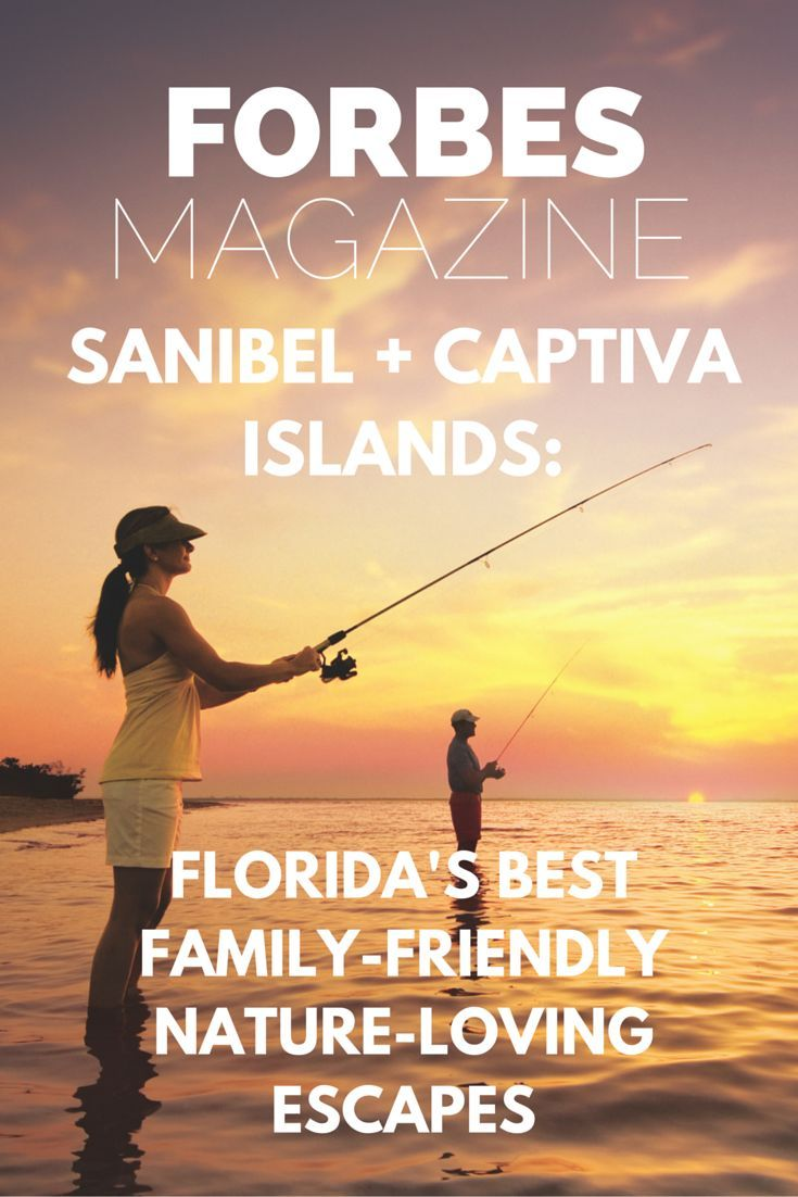 161 best simply sanibel captiva images on pinterest captiva sanibel captiva islands floridas best family friendly nature loving escapes nvjuhfo Gallery