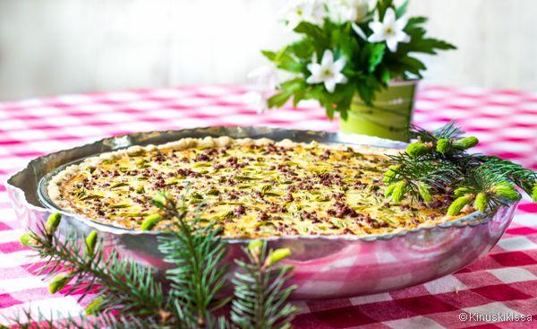 """Etelä-Suomessa kuusenkerkät ovat juuri nyt parhaimmillaan. Kuusen vaaleanvihreät """"tupsut"""" sopivat mausteeksi salaatteihin, ruoka-annoksiin ja suolaisen piirakan pinnalle. Suosittelen lämpimästi testaamaan tätä ihanaa yhdistelmää poron kanssa!"""