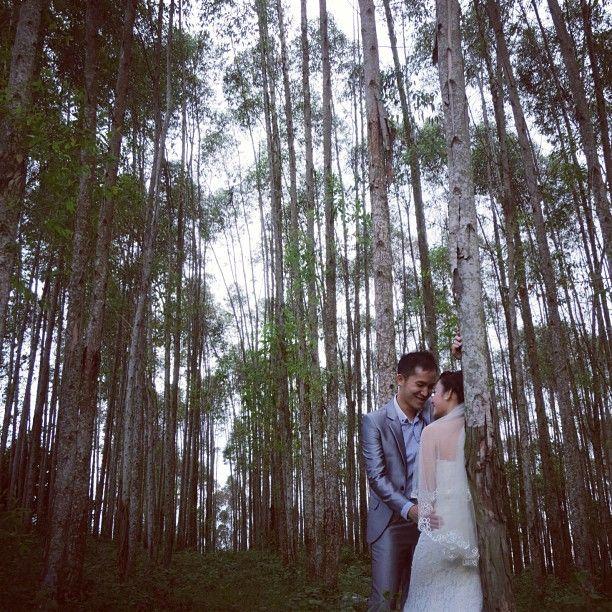 Prewedding photo #wedding #photo #forest #lover