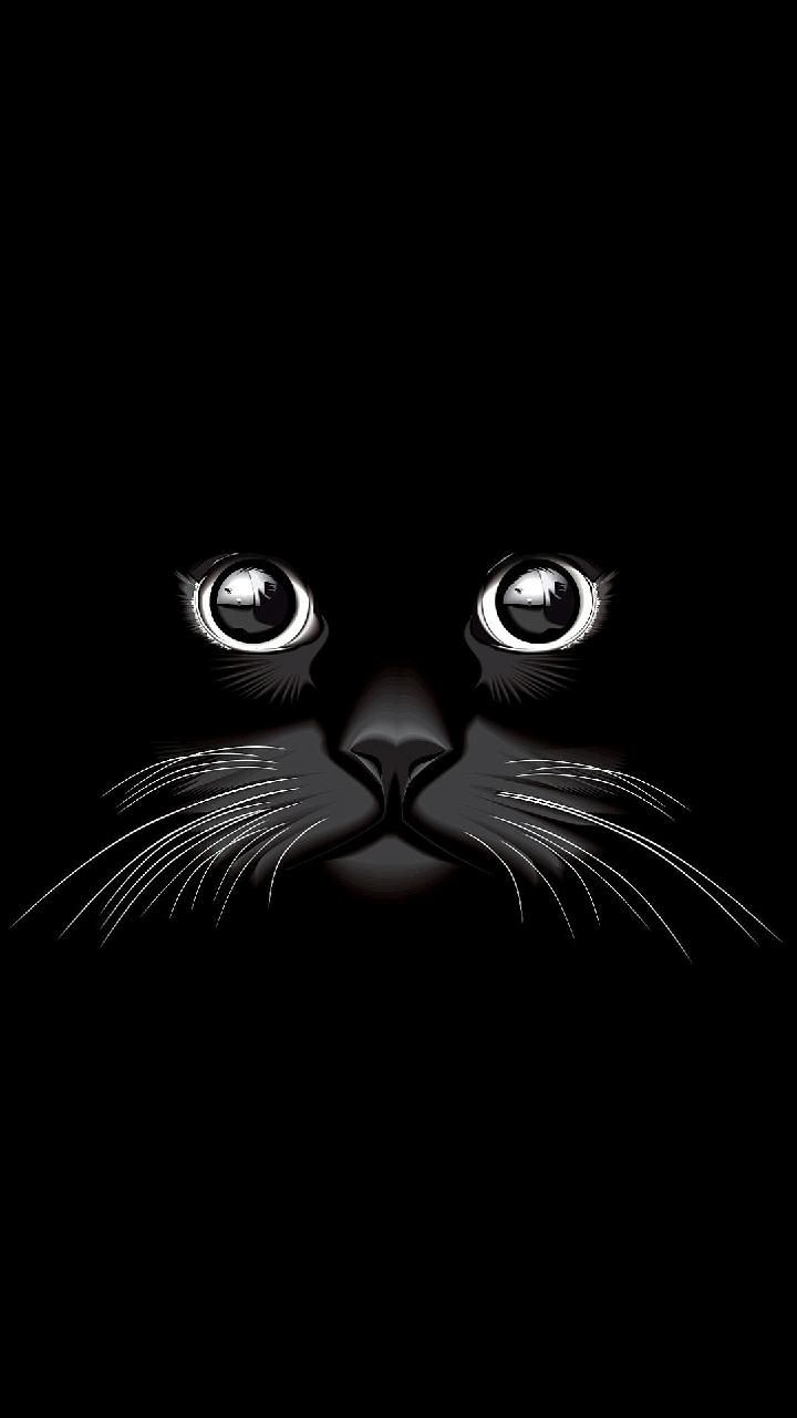 Download Cat Eyes Wallpaper By Dljunkie E5 Free On Zedge Now Browse Millions Of Popular Cat Wallpapers Eyes Wallpaper Cat Wallpaper Black Phone Wallpaper