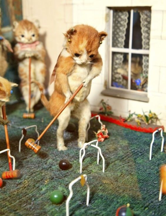 Walter Potter's Museum of Curiosities | Walter Potter made a curious career as a taxidermist in 19th-century ...