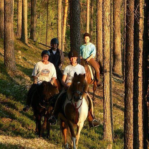 Hevosvaellus on ensiluokkainen lahja silloin, kun mietit materialahjan sijaan elämyksen lahjoittamista läheiselle ihmiselle. Paltamon järvet ja vaarat luovat upeat puitteet tällä islanninhevosvaellukselle, jonka aikana nautitaan myös ateria. Oppaan kanssa suoritettava vaellus kulkee läpi metsäpolkujen ja pikkuteiden. Hevosvaellus on unohtumaton kokemus eläinten ystävälle ja hevoshullulle, ja väitämmepä lahjat.fi-toimituksessa, että kaikkihän tästä nauttivat ikään ja mieltymyksiin katsomatta…