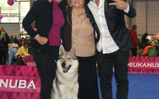 Il campionato europeo di Brno 2014 dell'Ezechielelupo Kennel - La Cronaca #cani #canelupocecoslovacco #dogshow