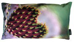 Cactus Pillow Valentines Day Heart, printed on cotton canvas.
