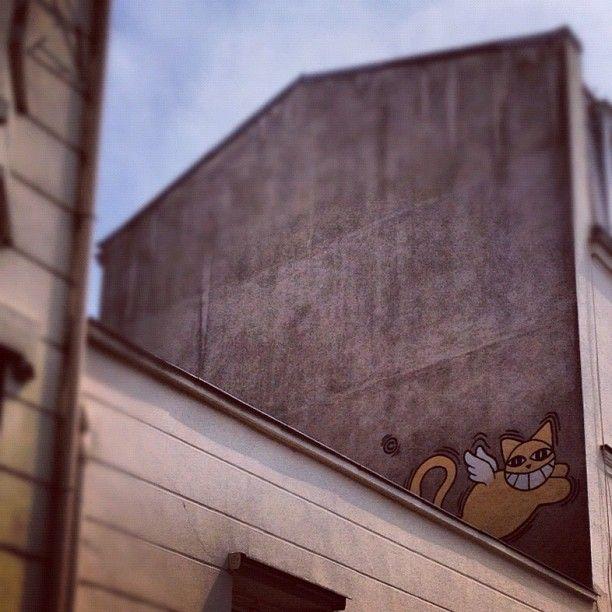Cat Graffiti Instagram photo by Solopress