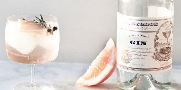 Wij hebben de zomer in onze bol! Ter ere van dit feest hebben we iets meer dan een handvol frisse cocktails met gin in de hoofdrol verzameld.