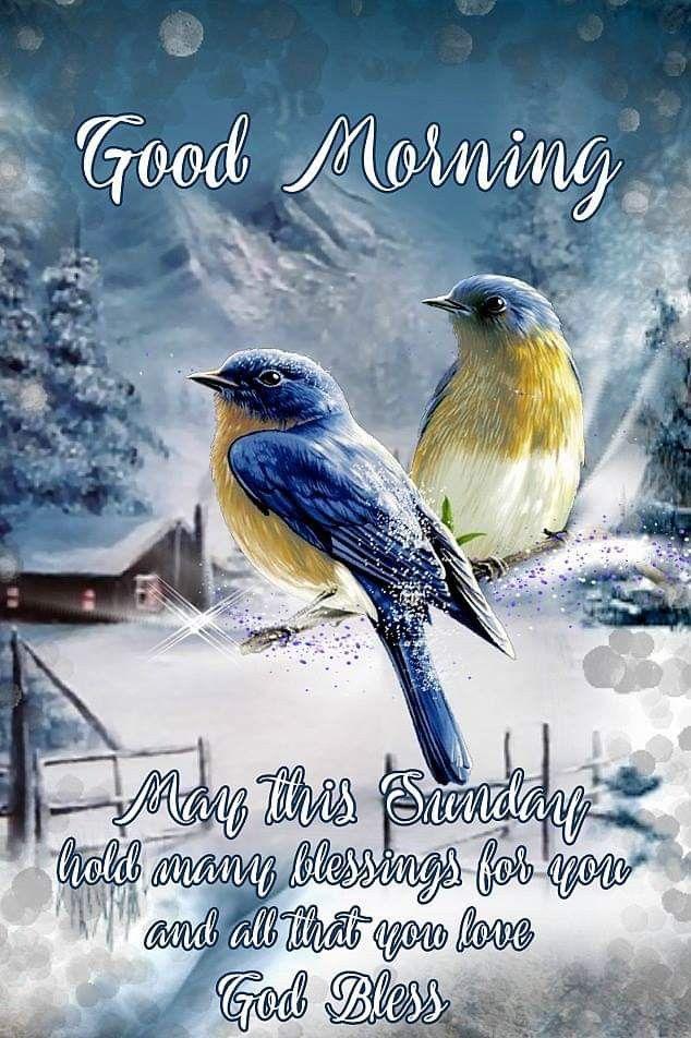 Sunday Blessings Greeting Good Sunday Morning Sunday Greetings