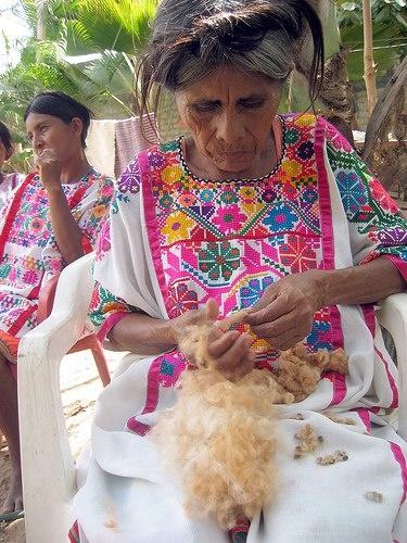 Weaver from Zacualpan, Guerrero, Mexico, preparing to spin coyuche cotton, a natural brown cotton (Cultura)