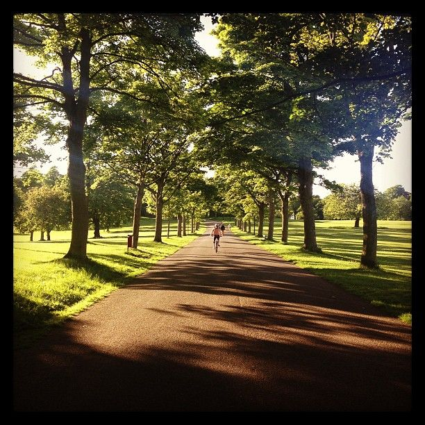 Perfect for a Sunday run is the amazing green space in Roundhay Park, Leeds