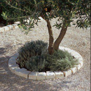 Une bordure de pierres naturelles autour de votre arbre