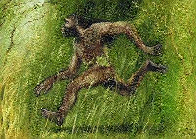 Nittaewo - These small humanoids have been being reported from Sri Lanka since 400AD, and were even recorded by Pliny the Elder. They are supposed to live in trees, and use their dagger-like claws to snatch food from human settlements.