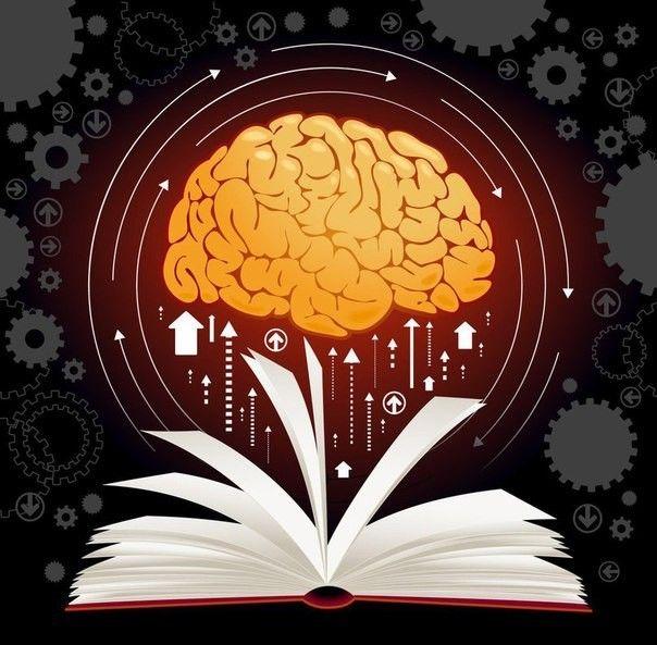 """7 книг для развития вашего мозга  1. Роджер Сайп. """"Развитие мозга""""  Все мы можем быть раза в три лучше, чем сейчас, но как этого добиться? Профессиональный коуч Роджер Сайп считает, что нам нужно эффективнее использовать свой мозг, и предлагает заняться его развитием. Конечно, здесь не обходится без прописных истин — чтобы стать образцом продуктивности, вам придется избавиться от бесполезных занятий (в число которых входят лишние часы сна). Пперестать беспокоиться по мелочам и постоянно…"""