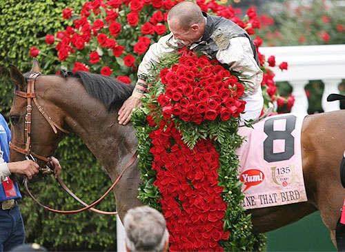 2009 Kentucky Derby Winner - Mine That Bird