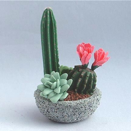 Bowl garden of cacti and succulent plants #polymerclay