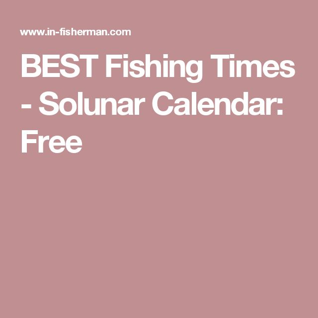43 Best Fishing Brands Images On Pinterest Logo Google