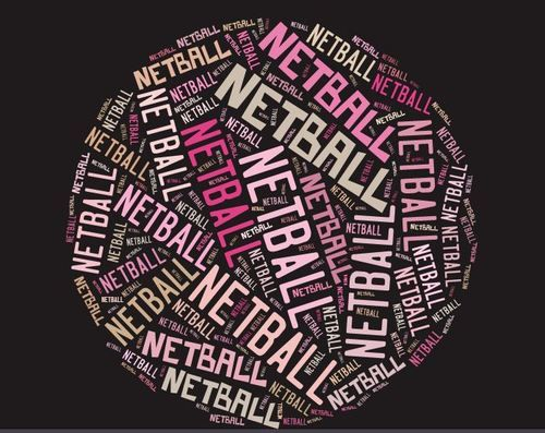 38 Best Netball Quotes Images On Pinterest Netball