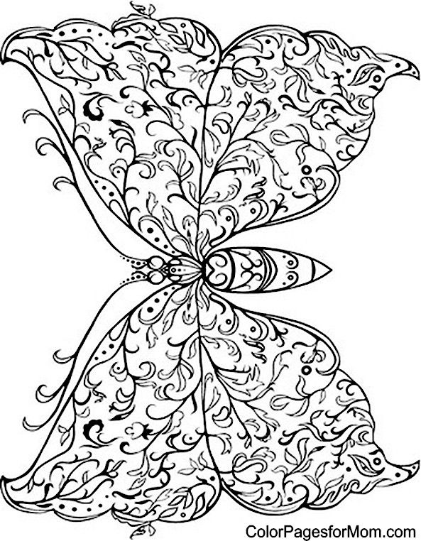 Butterfly Coloring Page 33