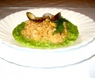 Risotto with Clams and Broccoli Puree