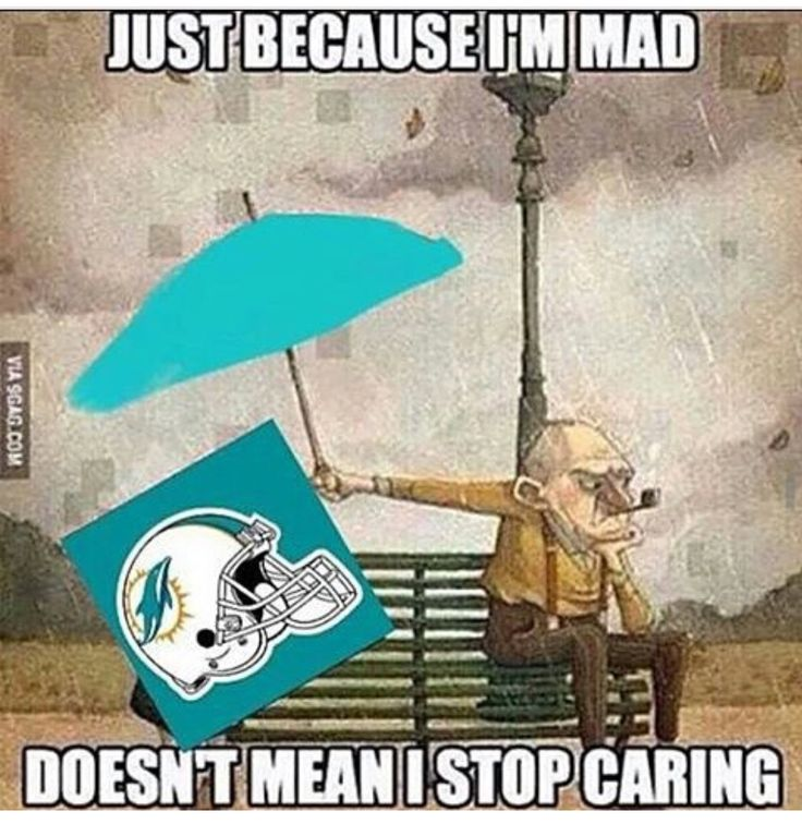 Me with the Dolphins right now.