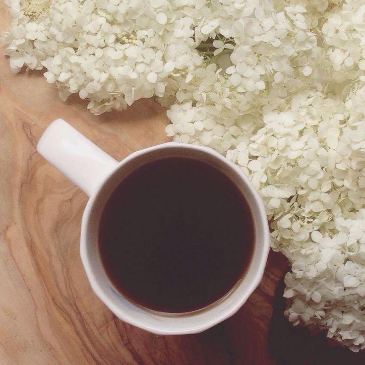 Coffee and hydrangea season, oh yes! #hydrangeaallsummerlong • • • • • #adoremycupofcoffee #abmathome #beautyintheeveryday #coffeebreak #creativelifehappylife #flashesofdelight #fouriadorefriday #rsblooms  #moncton #nb #novascotia #verilymoment #thedulcetlife #nothingisordinary #littlestoriesofmylife #thatsdarling #momentsofmine #seekthesimplicity #visualcrush #petitejoys #coffeeandseasons