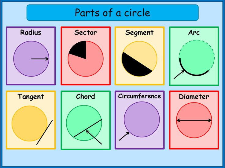 http://www.aplustopper.com/parts-of-the-circle/  What are the Parts of a Circle - A Plus Topper