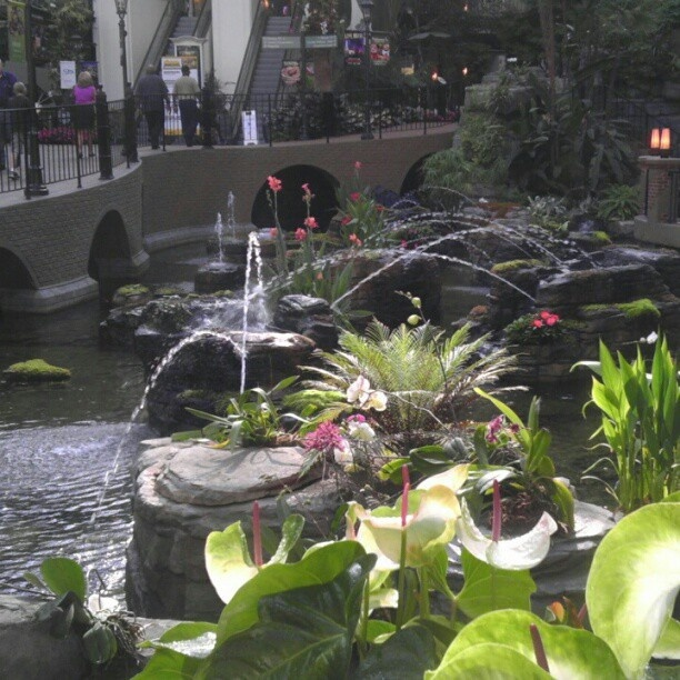 Fountain fun via @Iamwill527 on InstagramEnvironment Inside, Extraordinary Environment