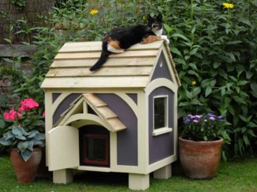 unusual outdoor cat house design - if we put this on stilts with some steps = perfect.