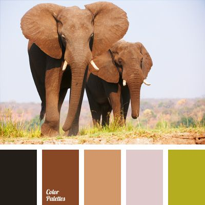 Brown shades of elephant's skin underlined with saturated green and olive-green grass color. Palette of Africa colors is suitable for decoration of Hall, hallway or study-library; will looks organic in autumn and winter wardrobe of natural fabrics, both female and male.