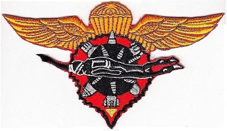US Navy USN Philippines Explosive Ordnance Disposal Diver Subic Bay Airborne