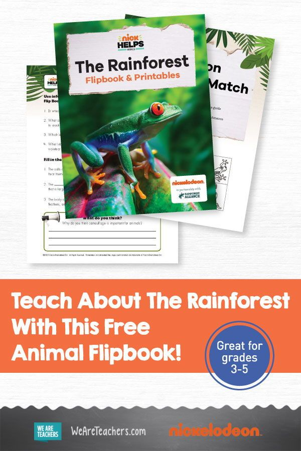 This Rainforest Animal Flipbook Is Filled With Crazy Facts And It S Free In 2020 Flip Book Middle School Literacy Middle School Writing Create mobile friendly (html5) flipbook pdf and reach your audiences on all devices: pinterest