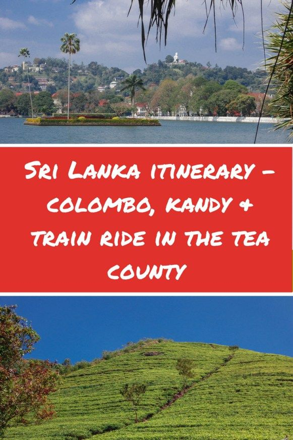 Sri Lanka Itinerary - Colombo, Kandy & train ride in the tea county. What you need to know, see and experience in Sri Lanka | Sri Lanka itinerary | Things to do in Colombo, Sri Lanka | Where to stay in Colombo, Sri Lanka | Top destinations Sri Lanka | Sri Lanka Travel | Sri Lanka Tips