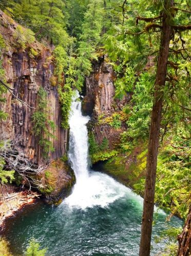 40+ Hikes in Oregon - Best Hikes, Guides, and Trail Maps | EveryTrail Love this!