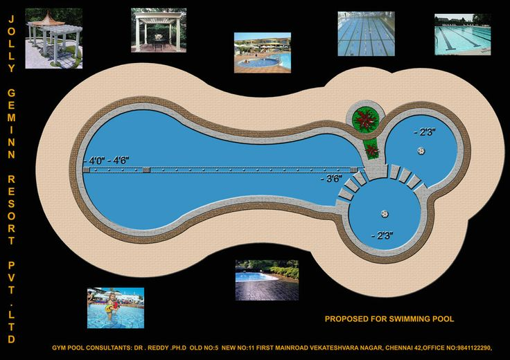 nebulae developer  providing modern swimming pool and quality swimming pool construction,