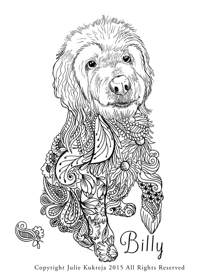 I Can Create Custom Pet Portrait Color Book Style Pages Feel Free To Contact Me