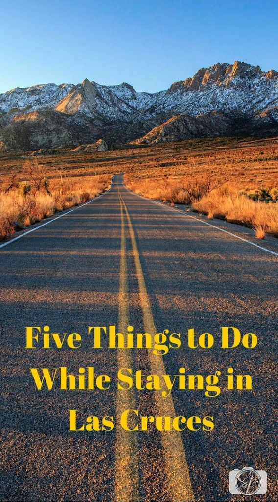 Five Things to Do While Staying in Las Cruces, New Mexico.