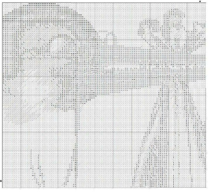 cicogna 1