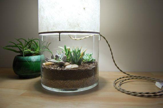 interesting lamp + terrarium