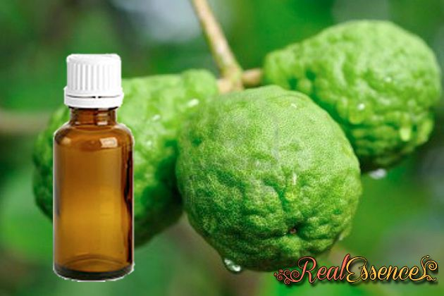 Bergamot 100% Pure and Natural AROMATHERAPY Essential Oil 100 ml