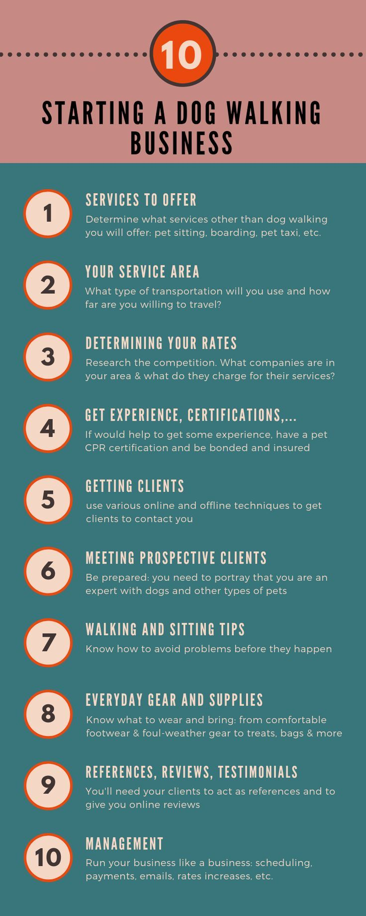 How To Start A Dog Walking Business Summary Final Thoughts Dog Walking Business Dog Walking Pet Care Business