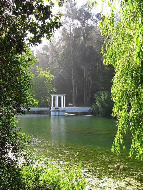 Jardín Botánico de Viña del Mar. Muy bonito, pero yo fui en el invierno..no agua, nada de verde..