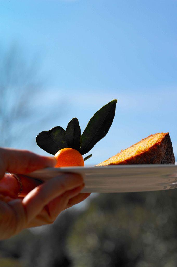 Пирог с апельсиновым конфитюром
